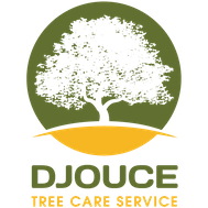 Djouce Tree Care Service